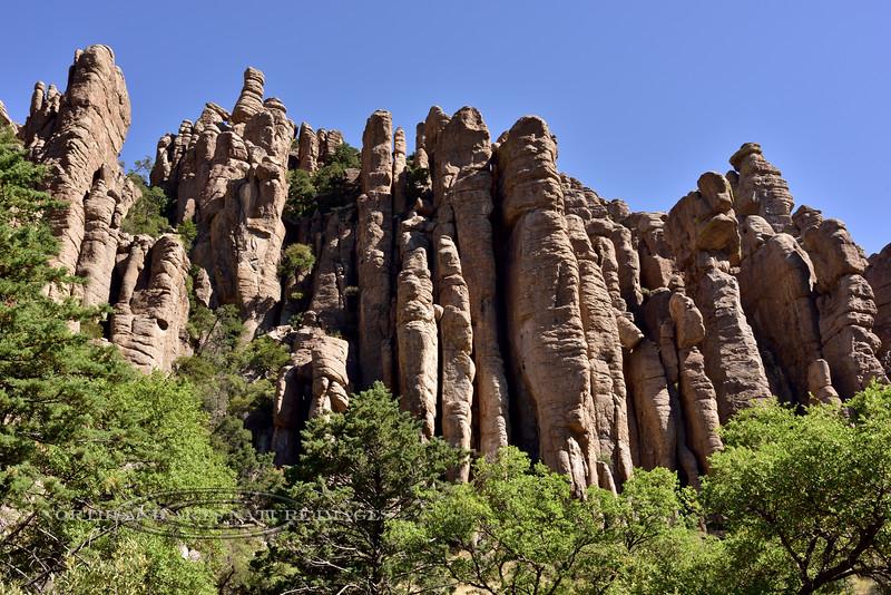 AZ-CNM2018.5.5-Organ Pipe formation. Chiricahua Nat. Monument Arizona. #700.