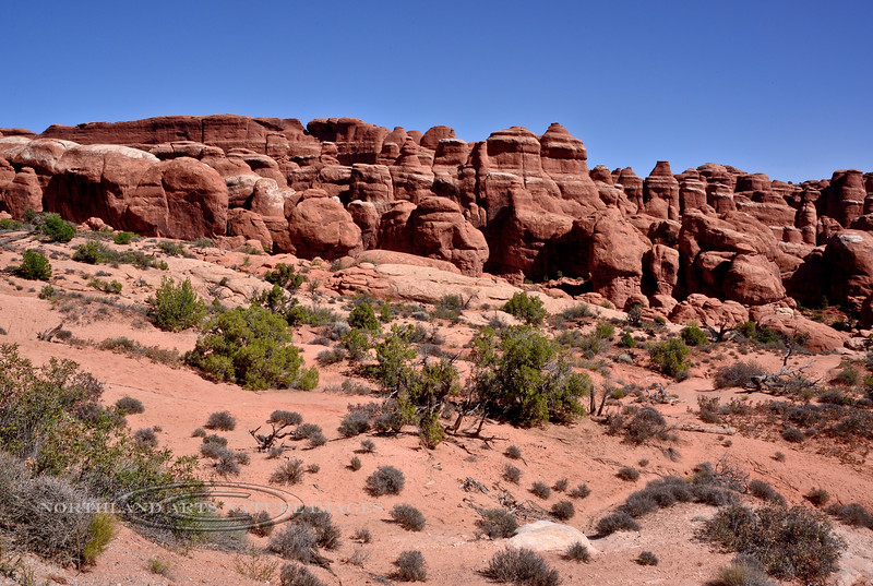 UT-ANP2017.10.6#160. Part of the Fiery Furnace. Arches National Park Utah.