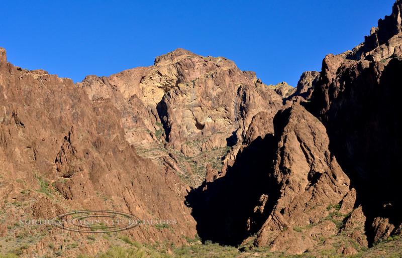 AZ-2020.2.24#5888.2. Palm Canyon in the Kofa Nat.Wildlife Refuge Arizona.