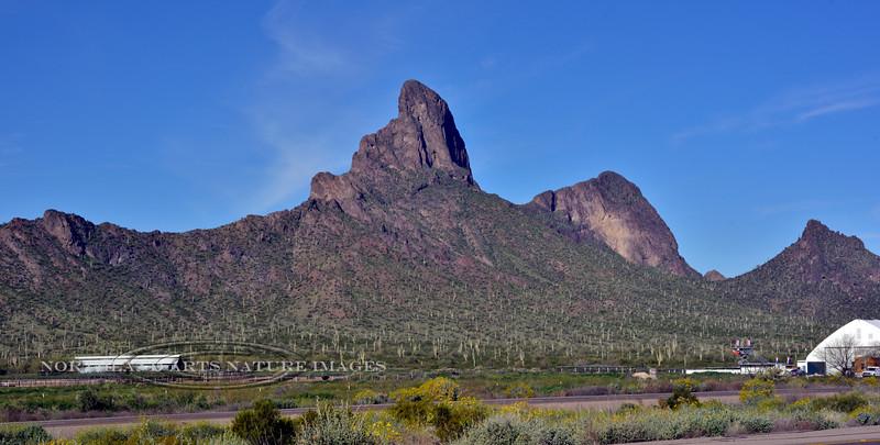 AZ-PPSP2019.3.15#133. Picacho Peak. Picacho Peak State Park Arizona.