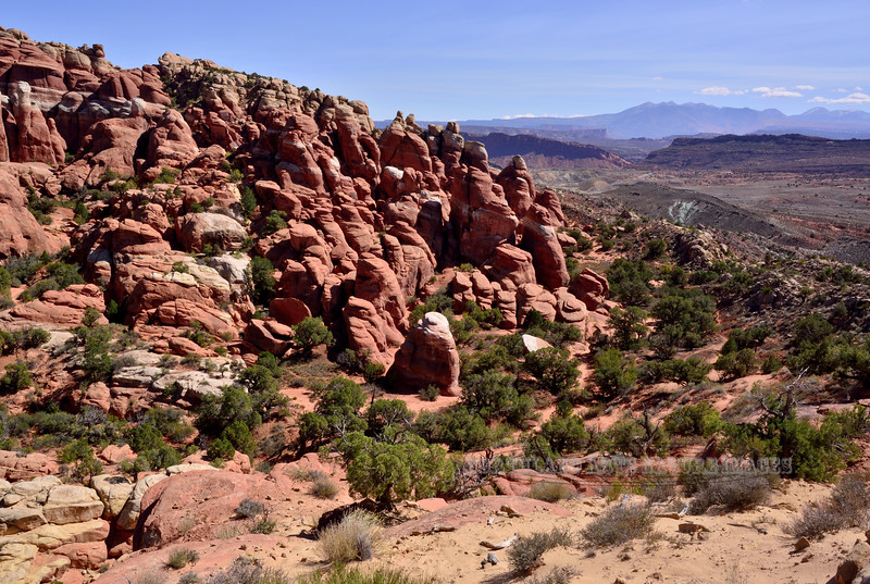 UT-ANP2017.10.6#173. Part of the Fiery Furnace formation. Arches Park Utah.
