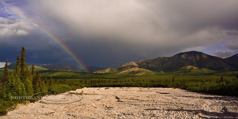 AK-DNP-2014.7.8#080. A summer evening rainbow over Jenny Creek, looking down the ten mile drainage. Denali Nat. Park, Alaska.