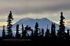 AK-2014.10.16#639. The Gunsight Ridge of Sheep Mountain, viewed from near mile 115 of the Glenn Highway Alaska.