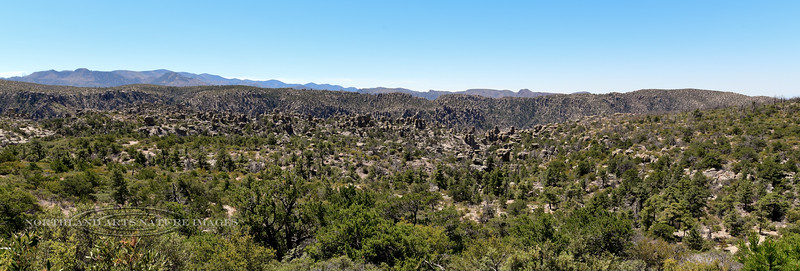 AZ-CNM, view of Hoodoo's near massai Point. Chiricahua Nat. Monument Arizona. #2018.5.5.1089.