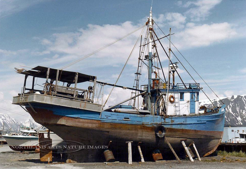 AK-1987.8#004.2. An old fishing boat in dry dock along the Homer Spit road. Looks to have seen better days. Homer Alaska.