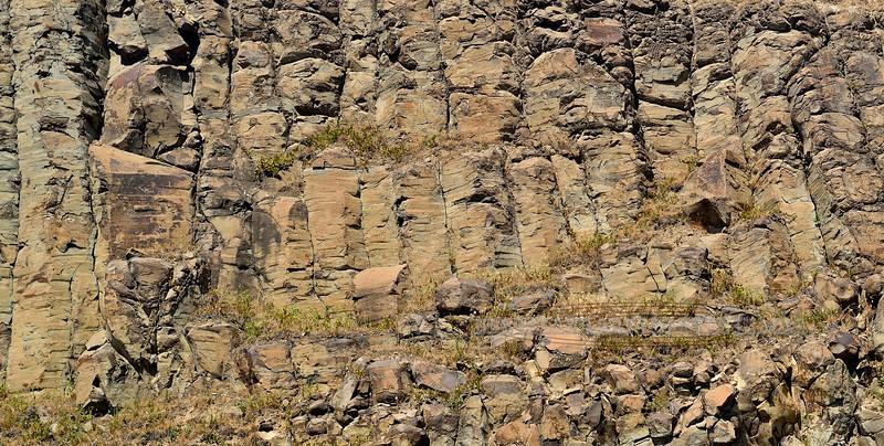 ID-2017.5.28#418. 14 to 17 million year old Basalt columns on the Snake River. Lewiston, Idaho.