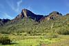 AZ-PPSP2019.3.15#136. Picacho Peak. Picacho peak State Park Arizona.