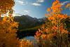 Fall at Bear Lake