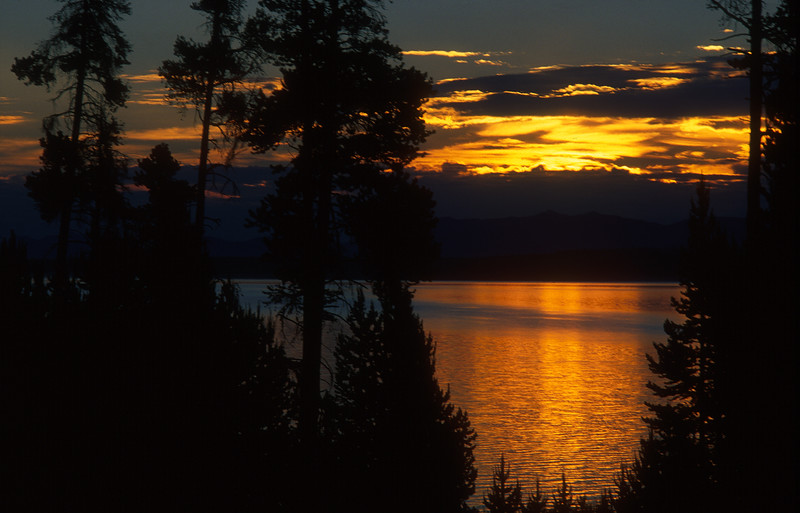 Yellowstone Lake  239