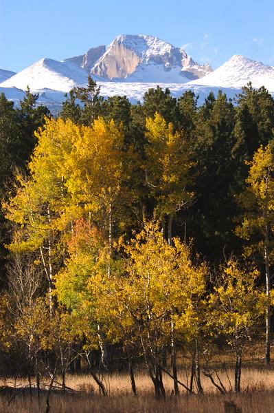 Longs & Autumn Aspens  035