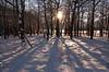 Snow & Aspens: Moraine Park 2003
