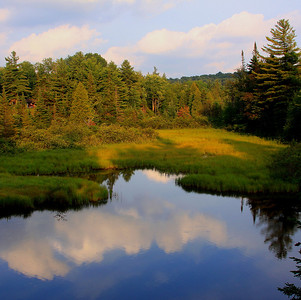 Oswegatchie River wetland and oxbow area