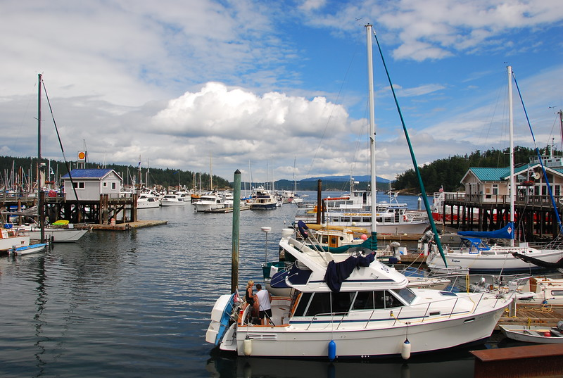 Friday Harbor sailboats