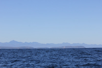 View of shoreline from the boat - sometimes the whales take us a few km out to sea.