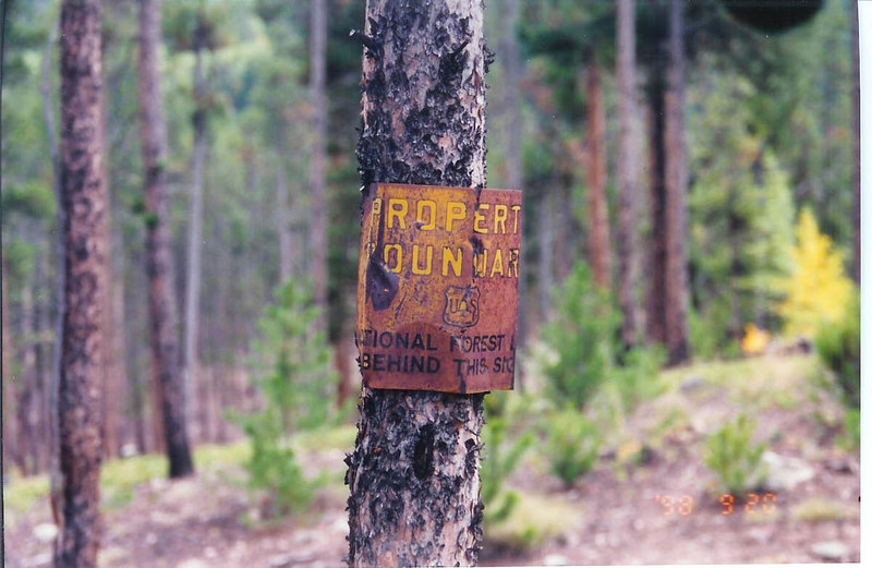 Forest boundary marker - Summit County, CO
