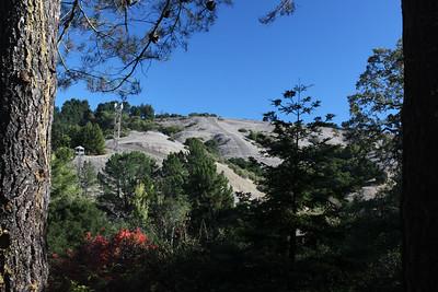 Hillside above Ivy drive