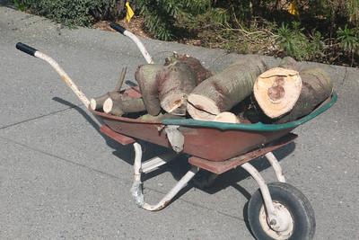 Wheelbarrow full of wood
