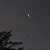 An airplane, Moon and Venus in dawn skies