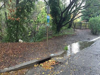 Water running in Moraga creek