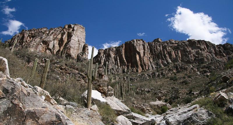 Madeira Canyon, Arizona.