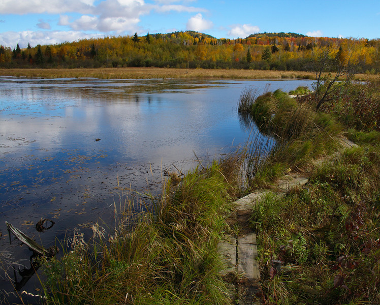 Along the Superior Hiking Trail.