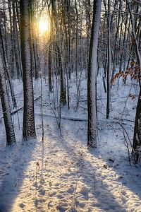 itasca_sunlight