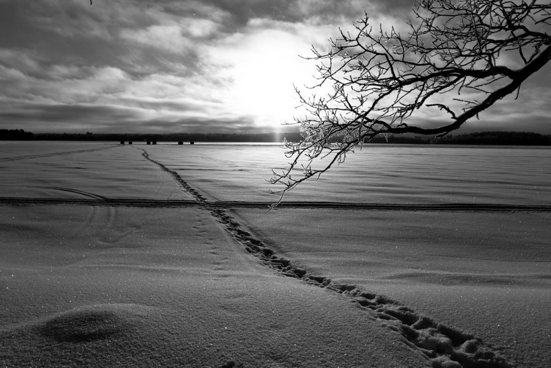 Footsteps leading out to fish houses. -Sunrise over Lake George