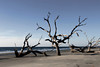 129475941_boneyard beach_high_res