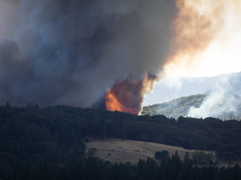 Fire progresses north as a pot farm goes up