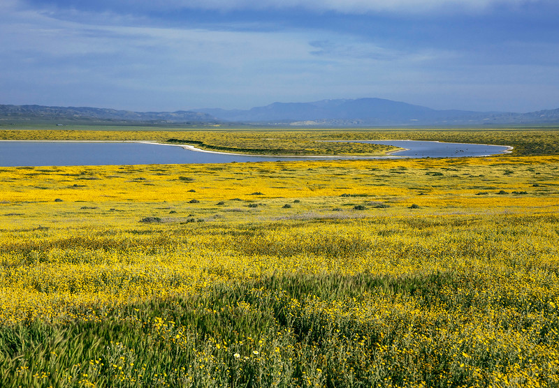 Carrizo  Plain and Soda Lake.