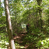 Approaching Brady Bluff on a spur trail to the right off the Cumberland Trail<br /> Brady Mtn TN