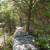 Looking back along the rocks of Donnelly's Overlook toward Kenny. <br /> Brady Mtn. CT TN