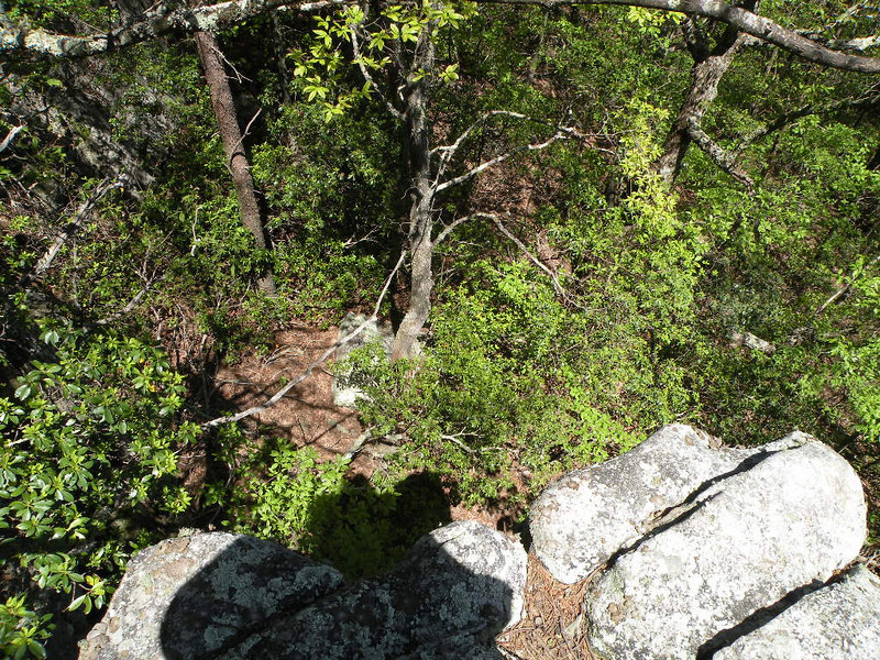 Looking down from Donnelly's Overlook <br /> Brady Mtn. TN Cumberland Trail
