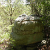 Jumping from rock to rock for views!<br /> Brady Mtn. CT TN