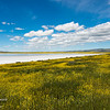 Soda Lake at Carrizo Plain National Monument