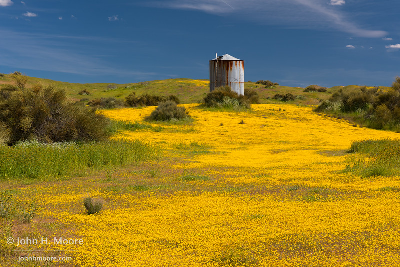 An old silo in the Caliente Range at Carrizo Plain National Monument