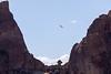 Asterisk Pass, Falcon Flight