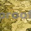 Cape Hatteras Sand