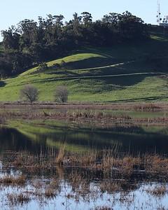 Coyote Hills Feb 12  08