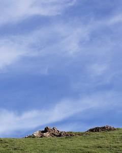 Coyote Hills Feb 12  71