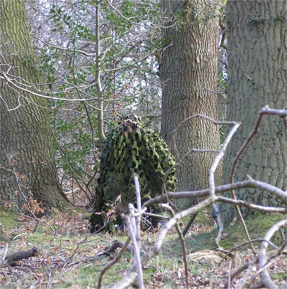 supercamofoz_ashridge_April2006