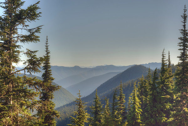 View from Sunrise, Mount Rainier National Park