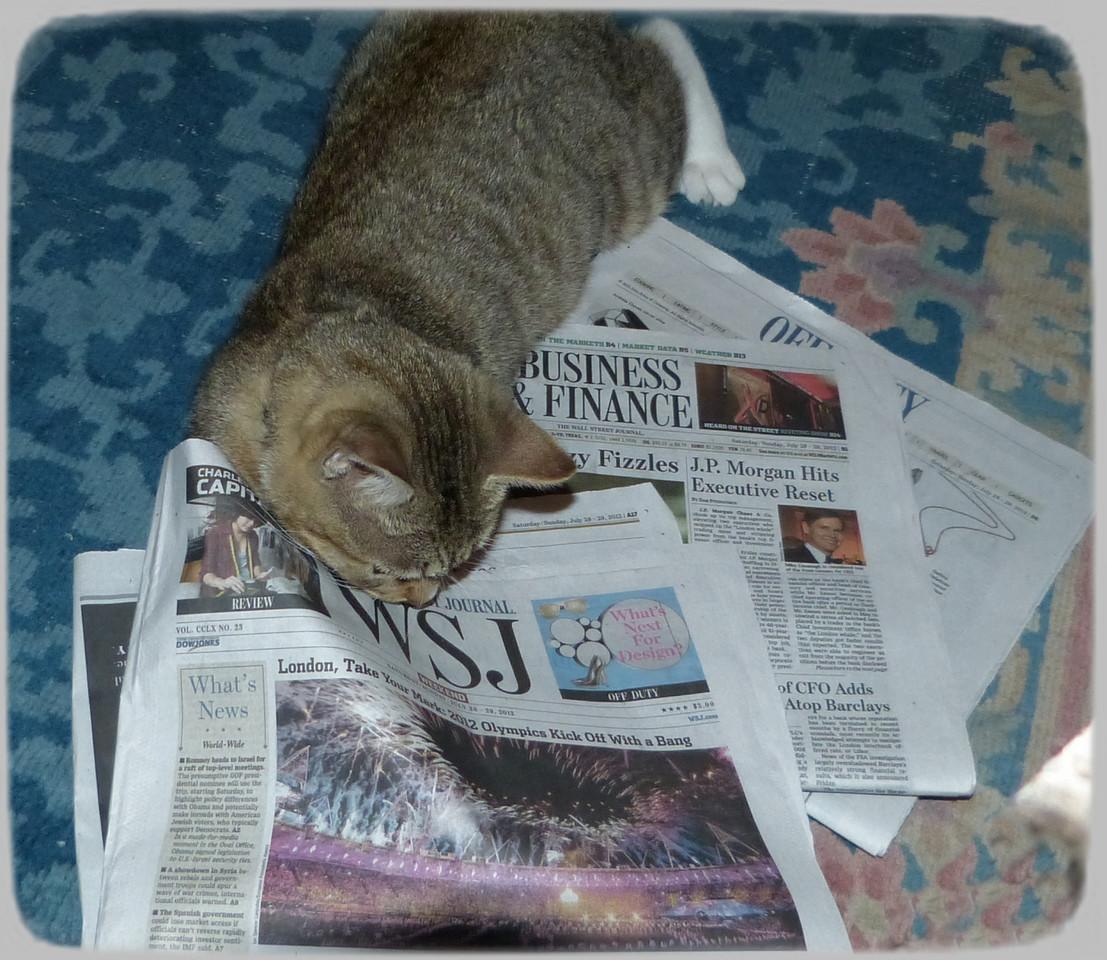 Willis likes to follow the Olympics