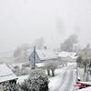 Fyrste snøen på Haugo 21.10.2010