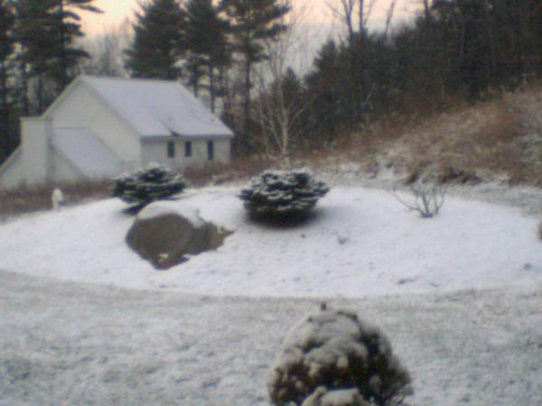 It finally snowed!