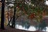 Autumn in Westford 14  Oct 18, 2006