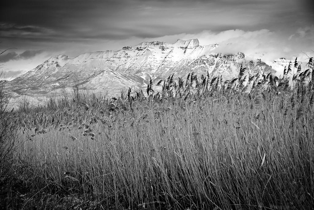 Mt. Timpanogos from Provo Bay, Utah