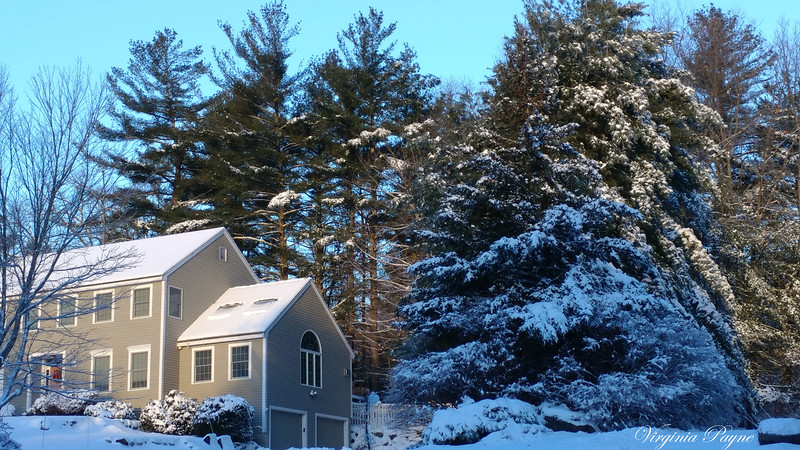 Snow scenery in our neighborhood...