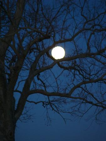 Winter Moon & Sun