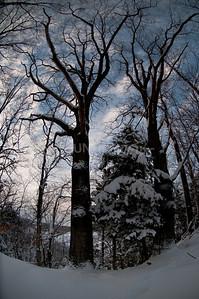 2009 Winter-38